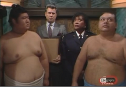 Dan, Roz and the Sumo Wrestlers