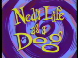 Ned's Life as a Dog