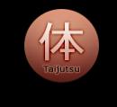 Taijutsu (2)
