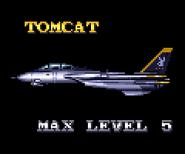 F14Tomcat1