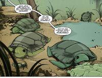 IDW TMNT Issue 1 Lil' Turtles