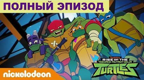 ПОЛНЫЙ ЭПИЗОД 🗡️ Эволюция Черепашек-ниндзя 'Загадочная заварушка' Nickelodeon Россия
