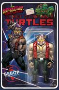 TMNT Bebop & Rocksteady Destroy Everything! Vol 1 1 RE Blindbox Comics A Bebop Variant