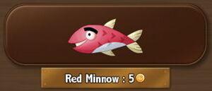 RedMinnow