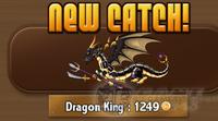 Ninja Fishing - Dragon King