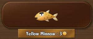 YellowMinnow