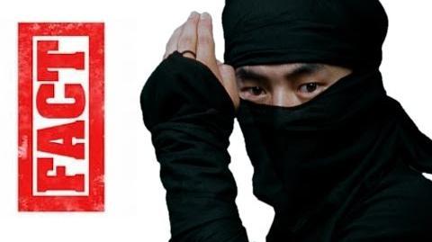 Ninja Facts
