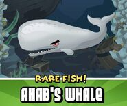 Ahab whale