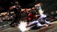 Ninja gaiden 3 43