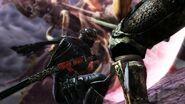 Ninja-Gaiden-III-24-02-12-0051