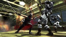 Ninja gaiden sigma profilelarge