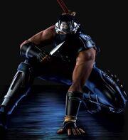 Ninja Gaiden big1