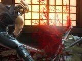Ninja Gaiden 3 Boss Battles
