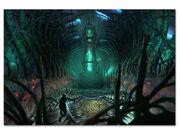 NGS2 underworld2