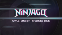 LEGO Ninjago — Gayle Gossip- A Closer Look