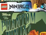 Who is The Phantom Ninja?
