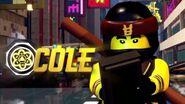 TLNM Game Cole