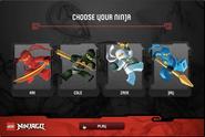 Ninja selection