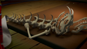 180px-Fangpyre bone fitst veiw