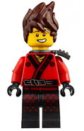 Ninja Force Kai 70608 70629 Minifigure