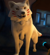 Wolfkita