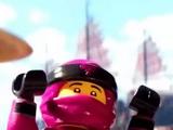 Розовый Ниндзя