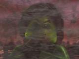 Evil Green Ninja (Morro / Possessed Lloyd)