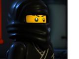 Types of Ninja