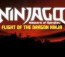 Flight of the Dragon Ninja