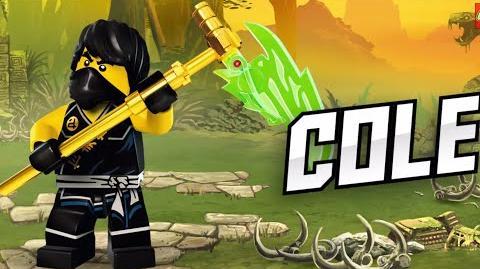 LEGO® Ninjago - Cole 2015