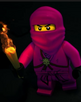 Ninja Rosa