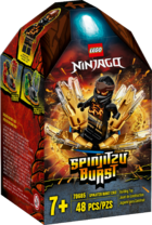 70685 Spinjitzu Burst Cole Box