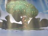 Дерево Путешественников (растение)