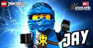 Legoland Jay