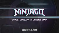 Gayle Gossip- A Closer Look