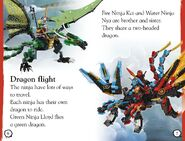 Ninja in Action-2