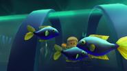 Рыбки и Дети