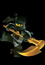 Ninja cole 174x252