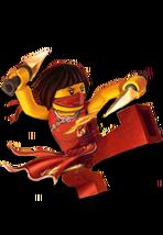Ninja nya 174x252