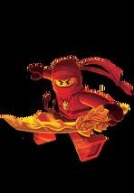 Ninja kai 174x252