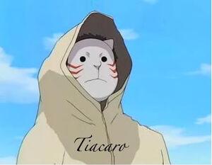 Tiacaro-1