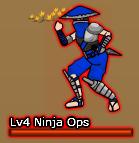 Ninja Ops