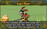 Kari Mori
