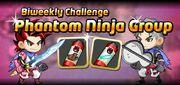 Phantom Ninja Group