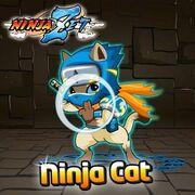 Ninja Cat Event