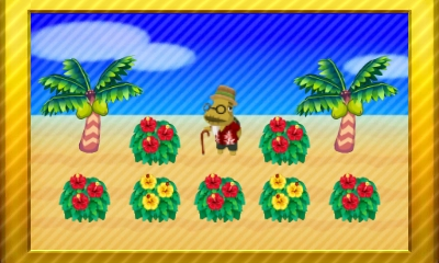Animal Crossing New Leaf Set 33