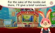 BunnyDailyNews