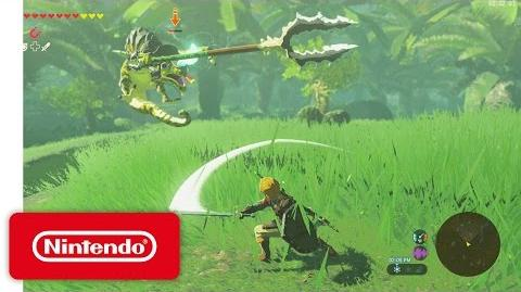 The Legend of Zelda Breath of the Wild – Let's Play Video