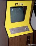 Pong cabbig-web