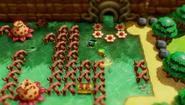The Legend of Zelda - Link's Awakening - Screenshot 4